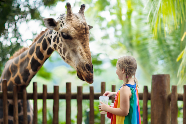 Holiday Gifts for Kids Under 2 | Zoo Membership