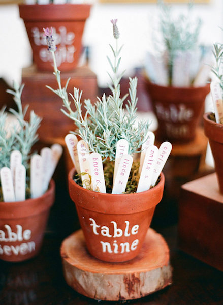 Potted Plant Escort sticks