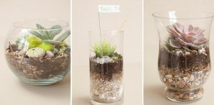 The Best DIY Wedding Ideas: Terrarium Centerpieces