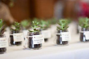The Best DIY Wedding Ideas: Mini Potted Succulent Escort Card & Wedding Favor