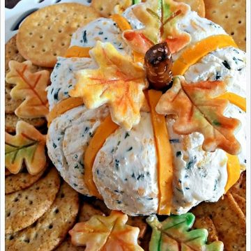 appetizer- cheeseball