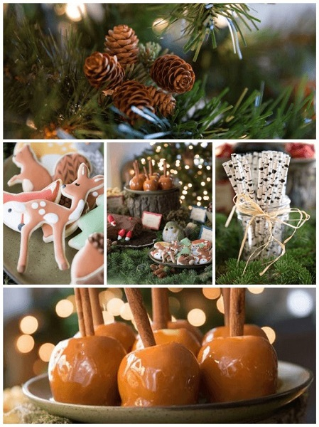 Winter Woodland Baby Shower Theme