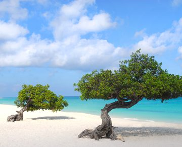 Planning a honeymoon | Aruba honeymoon