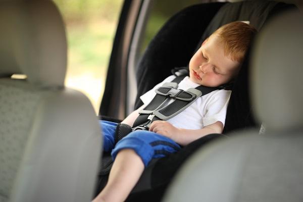 The Sleep Secrets for Road Trip