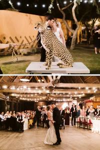 Zoo Wedding Venue