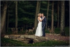 Embracing the Unexpected on Your Wedding Day | Furry Friends Having Fun