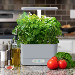 Sustainable Wedding Registry Gifts for the Eco-Conscious Couple | AeroGarden Harvest with Gourmet Herb Seed Pod Kit