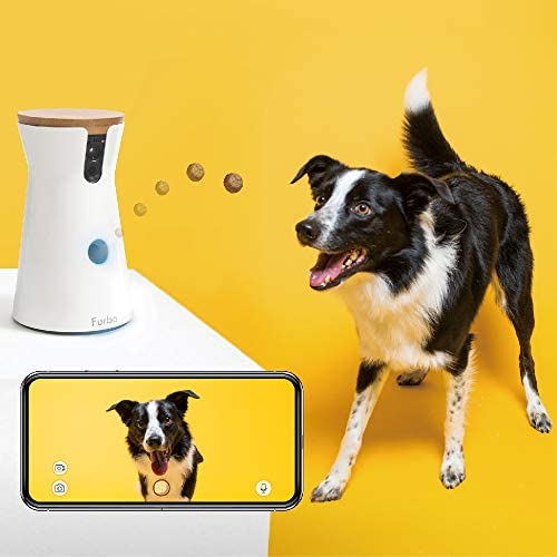 Tech Gifts You'll Love Adding to Your Wedding Registry | Furbo WiFi Dog Camera